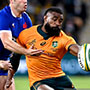 New Zealand vs. Australia, Bledisloe Cup and Rugby Championship – Saturday 14 August 09:05